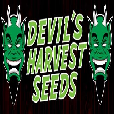 Devil's Harvest Seeds