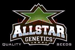 Allstar Genetics Seeds