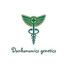 Dankonomincs Genetics Seeds