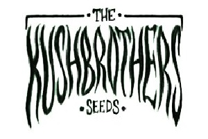 The KushBrothers Seeds