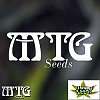 MTG Seeds Tru Blue Regular