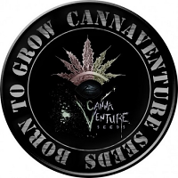 CannaVenture Seeds 425 Regular