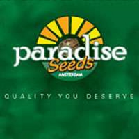Paradise Seeds Auto Collection Pack #2 Feminized