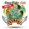 Venus Genetics Afghan Ryder Auto Feminized