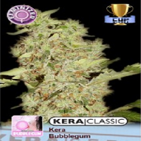 Kera Seeds Bubblegum Feminized
