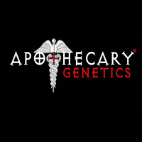 Apothecary Genetics Seeds Cherry OG Regular