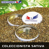Positronics Seeds Collector's Pack Sativa Feminized