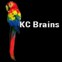 KC Brains Seeds White KC Regular