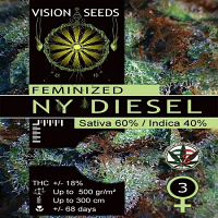 Vision Seeds NY Diesel Feminised