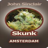 John Sinclair Seeds Skunk Amsterdam Feminised