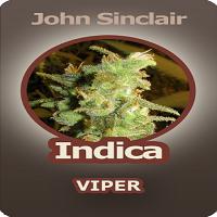 John Sinclair Seeds Indica Viper Feminized