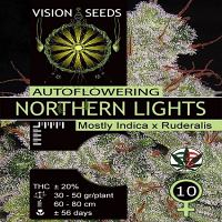 Vision Seeds Auto Northern Lights Feminised