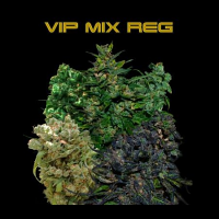 VIP Seeds VIP Reg Mix Regular