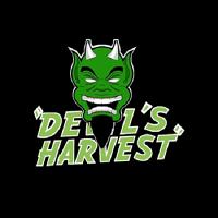 Devil's Harvest Seeds Hell's Bells Regular