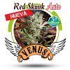 Venus Genetics Red Skunk Auto Feminized