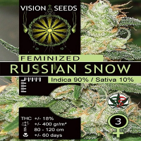 Vision Seeds Russian Snow Feminised