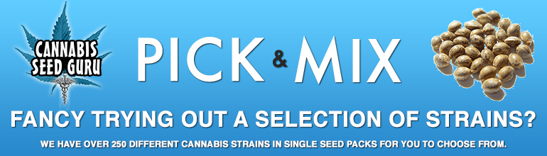 Pick N Mix cannabis Seeds
